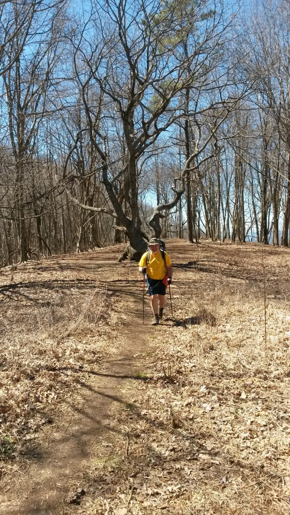 Recommend you deer lick shelter on appalachian trail